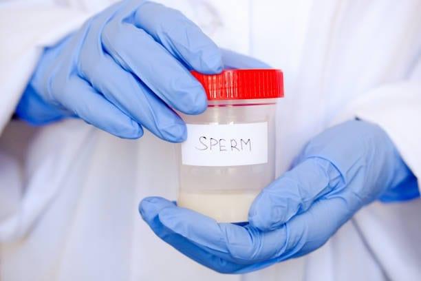 male donor-semen