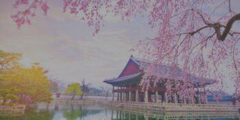 Medical Tourism South Korea